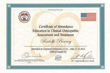 17 – Education in Clinical Osteopathic